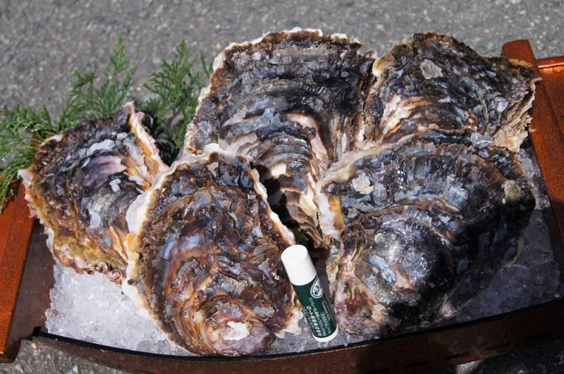 大きな岩牡蠣