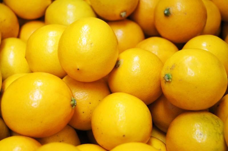 三重県御浜町産「マイヤーレモン」