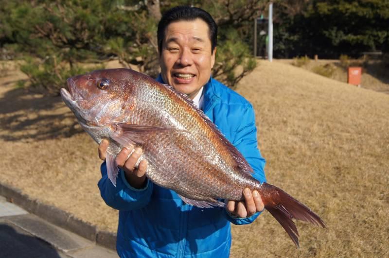 10キロ級【天然鯛】を紀伊長島港で中西総料理長がゲットしてきました!!