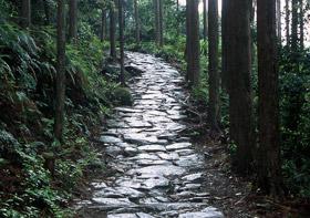 二大聖地を結ぶ祈りの道 世界遺産【熊野古道 伊勢路】