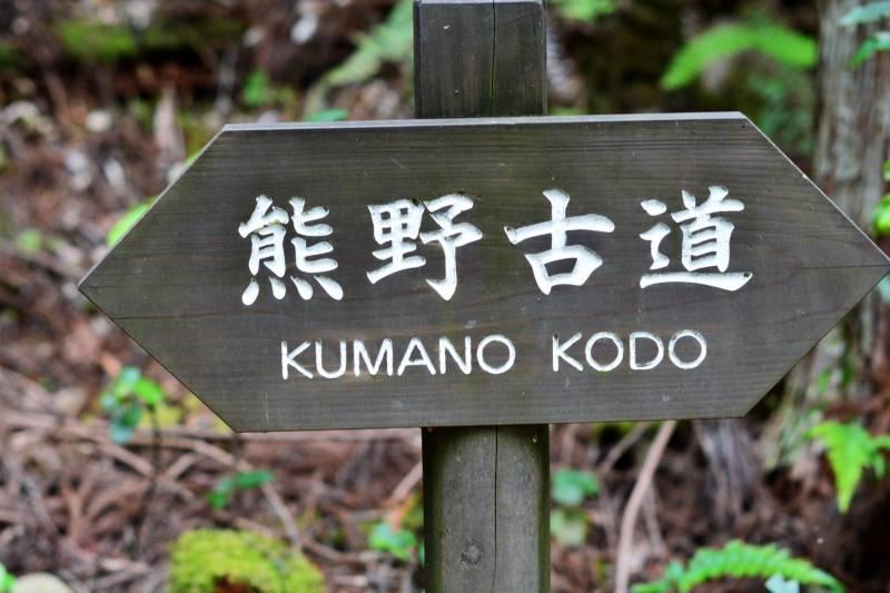 初めての世界遺産 熊野古道「伊勢路を歩く」方にはこちらのサイトがオススメ。
