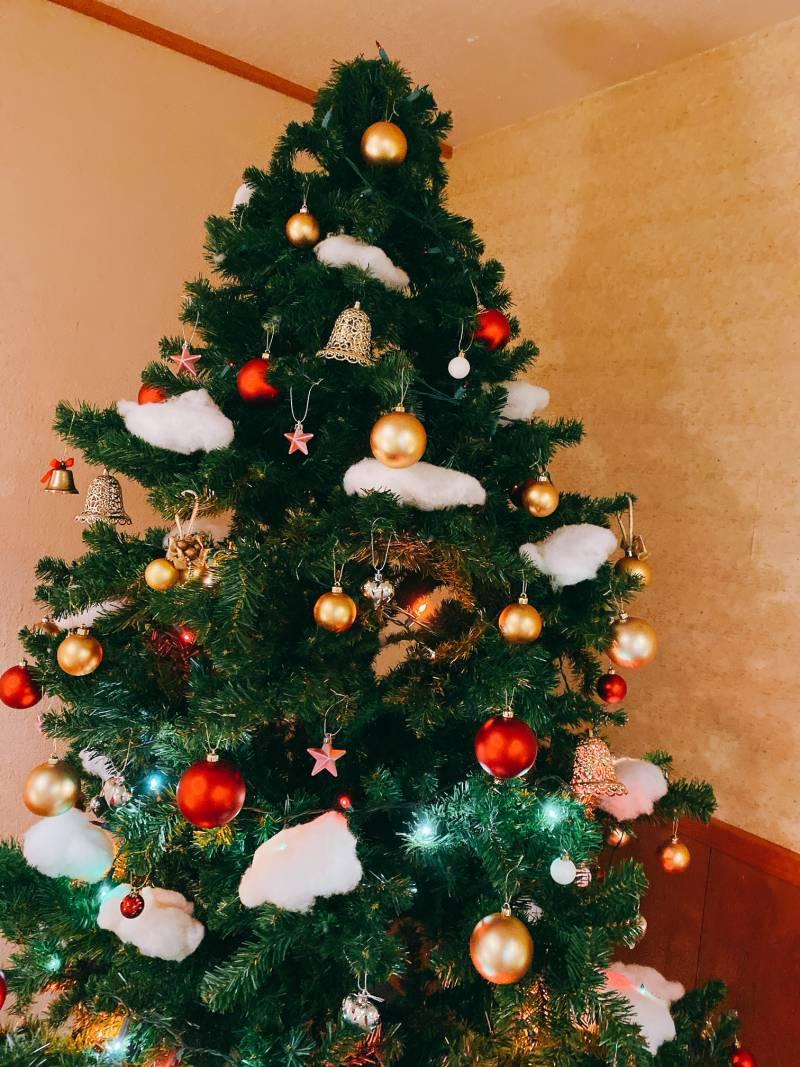 クリスマスツリーも登場しています♪