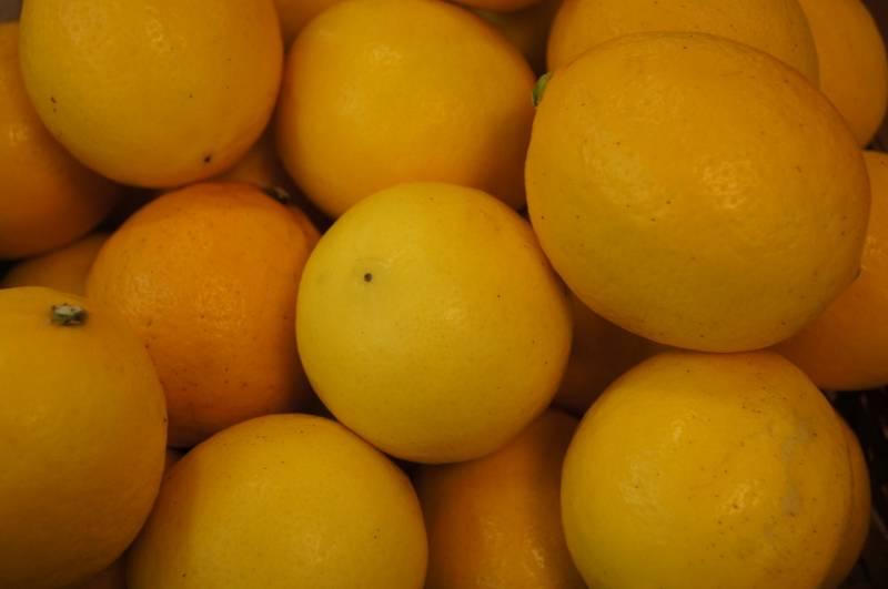 年末年始の期間限定!おそらく日本でここだけ【マイヤーレモン風呂】はじまりました!