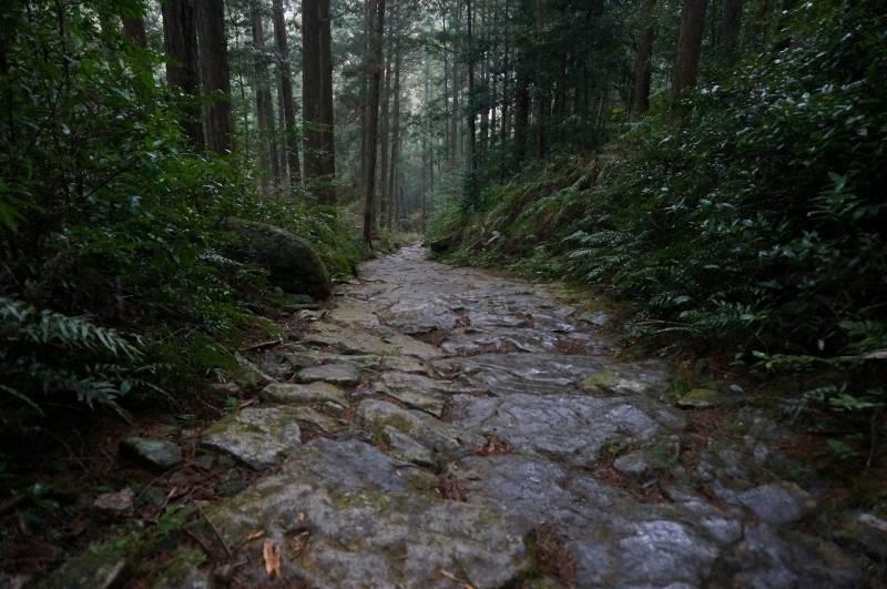 世界遺産登録15周年【熊野古道(くまのこどう)】