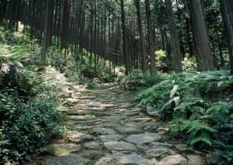 馬越峠(まごせとうげ)