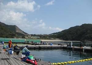 【通年】海上釣り堀「正徳丸」(釣り)